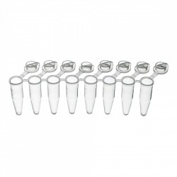 PurePlus® 0.2 mL 8-Well PCR Tube Strips with Individually Attached Clear Flat Caps, in Bags