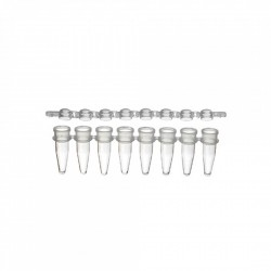 PurePlus® 0.2 mL 8-Well PCR Tube Strips and Strip Caps, in Bags